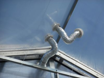 greenhouse-detail.jpg