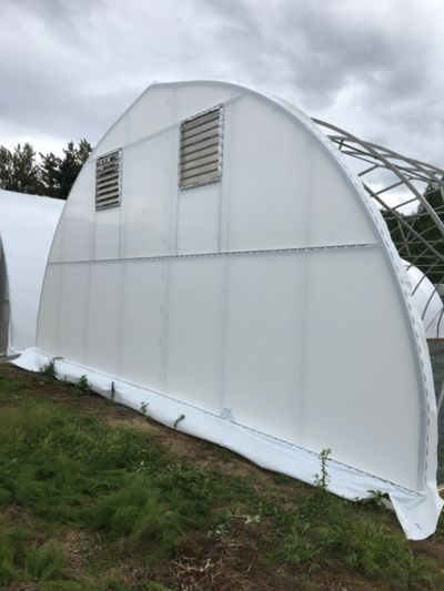 back-of-greenhouse.jpg