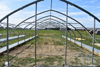 looking-through-greenhouse-frame.jpg