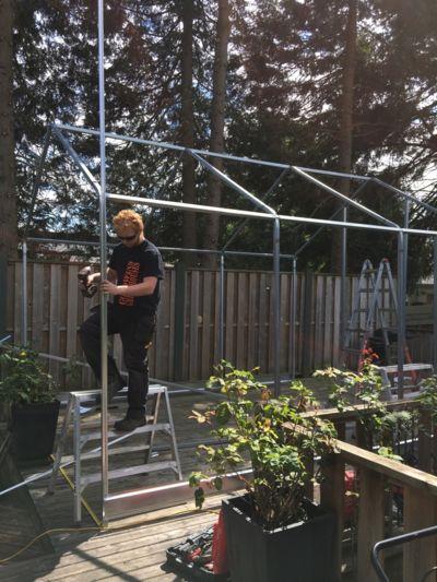 framing-greenhouse.jpg