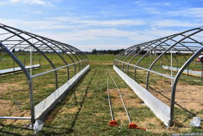two-greenhouse-structures.jpg