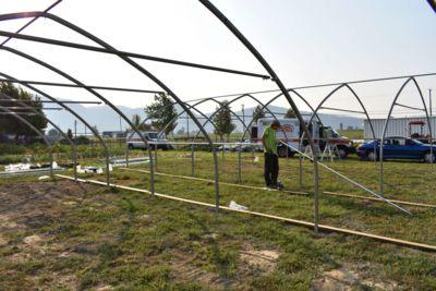 greenhouse-framing.jpg