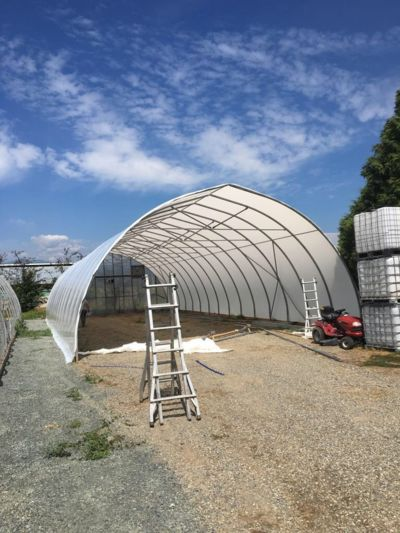 greenhouse-structure.jpg