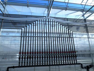 greenhouse-irrigation.jpg