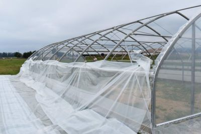 cover-on-greenhouse-frame.jpg