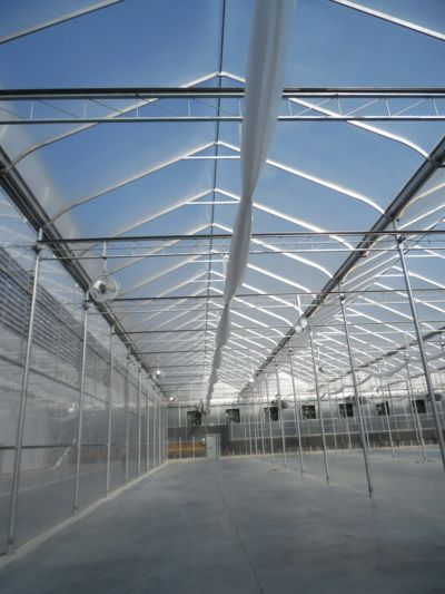 inside-greenhouse-structure.jpg