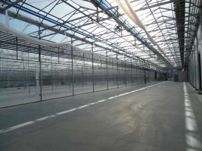 inside-gutter-connected-greenhouse.jpg