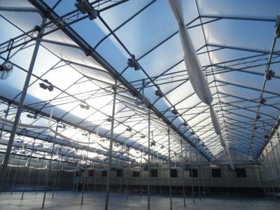 interior-greenhouse-structure.jpg
