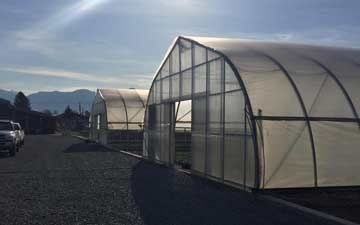 36' Wide Greenhouses