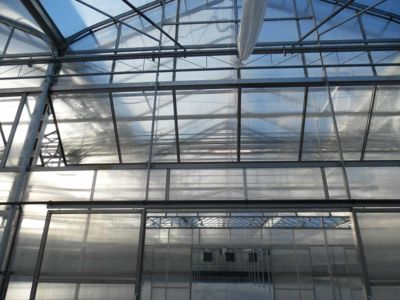 gutter-connected-greenhouse-structure.jpg