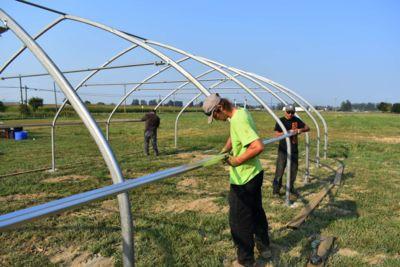 20x30-greenhouse-framing.jpg