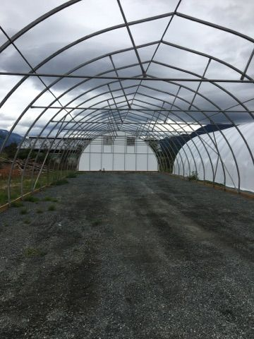 greenhouse-framing.jpg