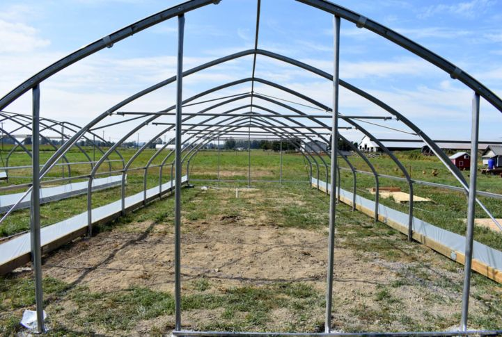 20' Wide Greenhouses