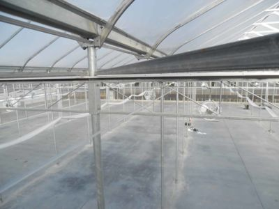 inside-greenhouse-with-fans.jpg