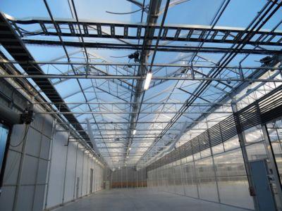 greenhouse-lighting.jpg