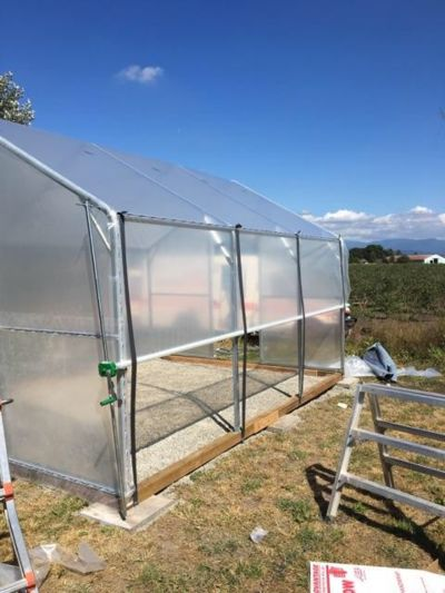 small-greenhouse-build.jpg