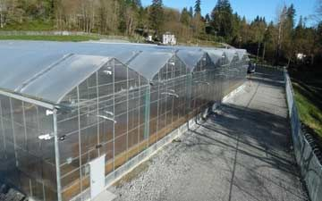 Gutter Connected Greenhouses