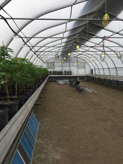 horticultural-greenhouse.JPG