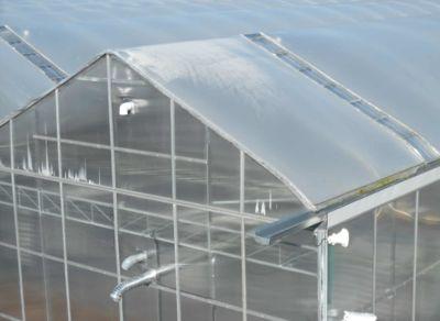 individual-greenhouse-detail.jpg