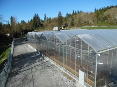 connected-greenhouses-fraser-valley.jpg